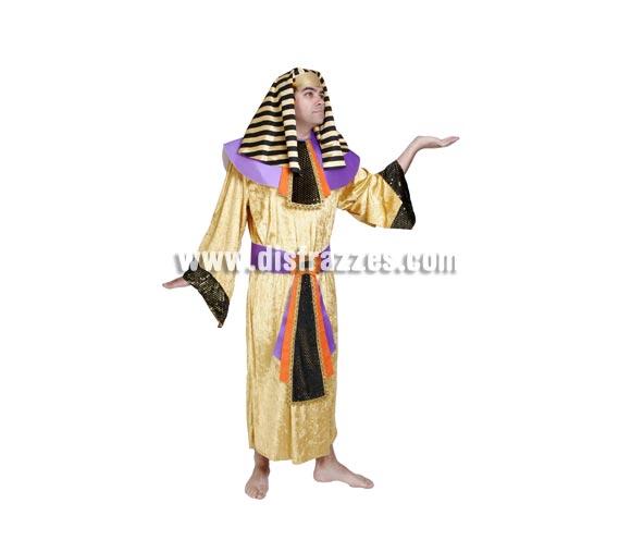Disfraz de Egipcio adulto para Carnaval. Alta calidad. Hecho en España. Talla única 52/56. Incluye tocado de la cabeza, cuello, túnica y cinturón.