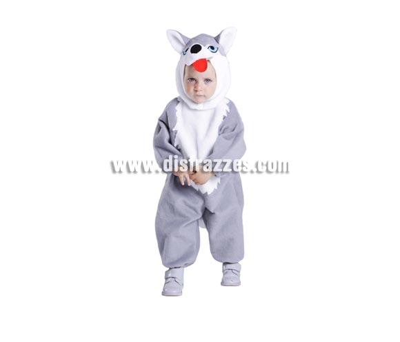 Disfraz barato de Husky 18 meses bebé para Carnaval
