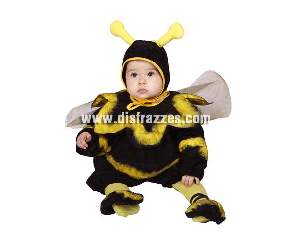 Pelele Abejita bebé barato para Carnaval. Talla de 6 a 12 meses. Alta calidad. Hecho en España. Incluye pelele con alas y capucha con antenitas.