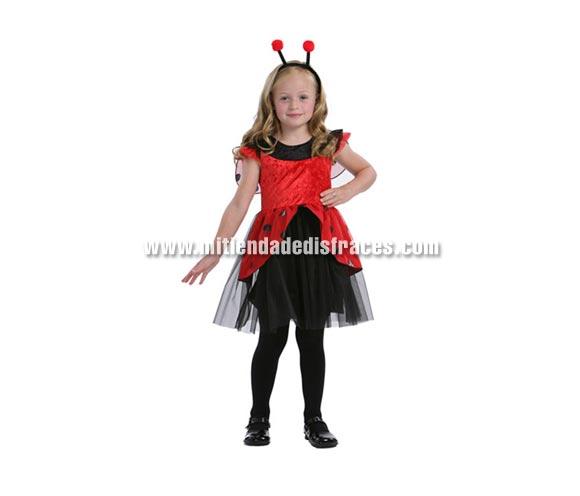 Disfraz de Mariquita infantil. Talla de 5 a 6 años. Incluye vestido y antenitas.