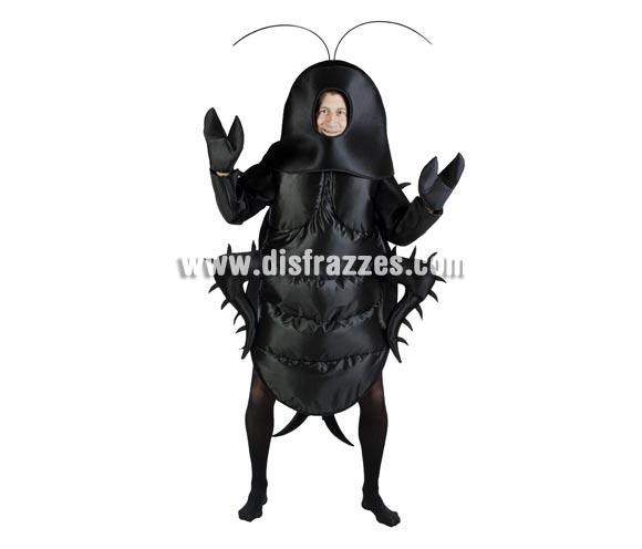 Disfraz barato de Cucaracha hombre para Carnaval