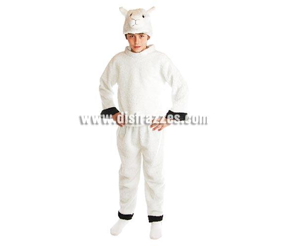 Disfraz de Oveja infantil para Navidad. Talla de 7 a 9 años. Incluye pantalón, camisa y gorro con forma de Ovejita.