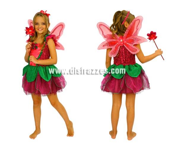 Disfraz de Hada Mariposa para niñas de 5 a 6 años. Incluye vestido, alas, varita y diadema.