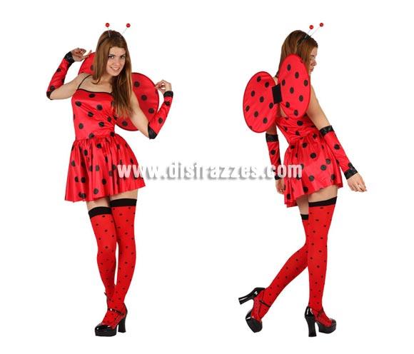 Disfraz de Mariquita Sexy para mujer. Talla 2, standar M-L = 38/42. Incluye vestido, mangas, antenas y alas. Medias NO incluidas, podrás encontrar en nuestra sección de Complementos.