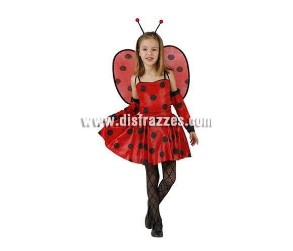 Disfraz de Mariquita para niñas de 7 a 9 años. Medias NO incluidas, podrás verlas en la sección de Complementos.